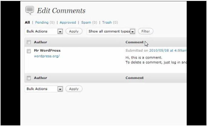 Delete Comment Spam WordPress