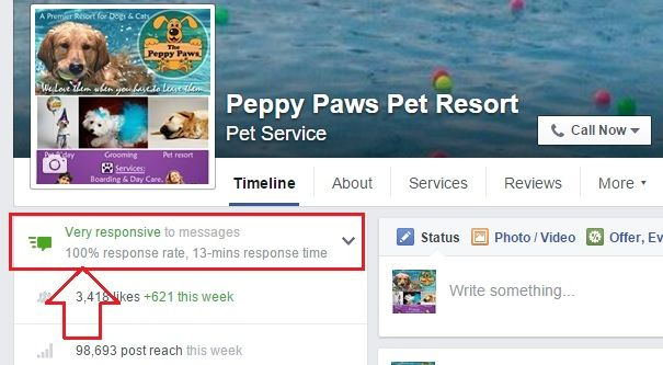 Facebook's Page Responsive Icon