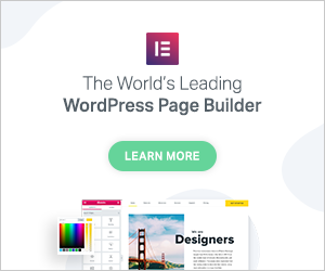 Elementor WordPress Website Builder