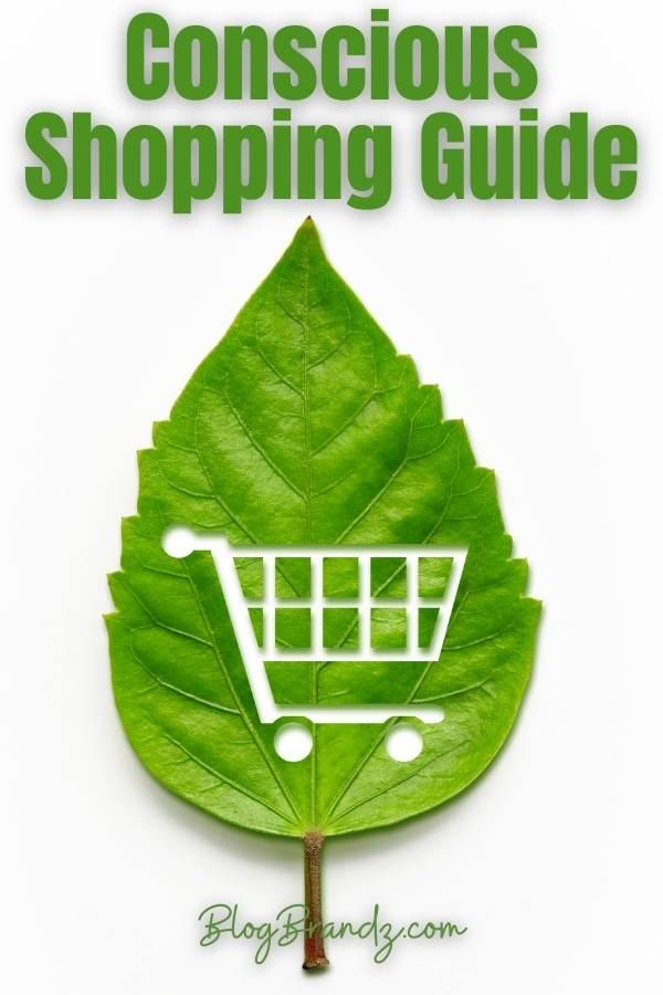 Conscious Shopping Guide